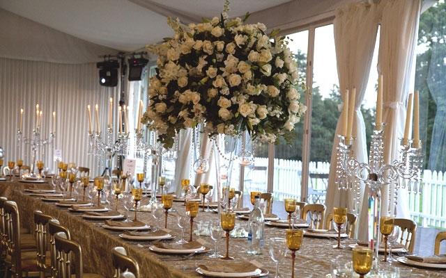 Saffron events uk private events junglespirit Choice Image